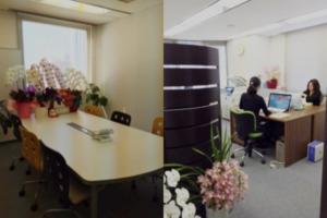 オフィス石野